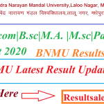 (OUT) BNMU Results 2021 Check: Bhupendra Narayan Mandal University results declared for B.A. B.com B.sc M.A.  M.sc Part 1, 2, 3 Result 2020